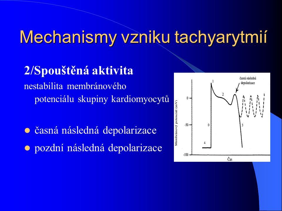 2/Spouštěná aktivita nestabilita membránového potenciálu skupiny kardiomyocytů časná následná depolarizace pozdní následná depolarizace Mechanismy vzniku tachyarytmií