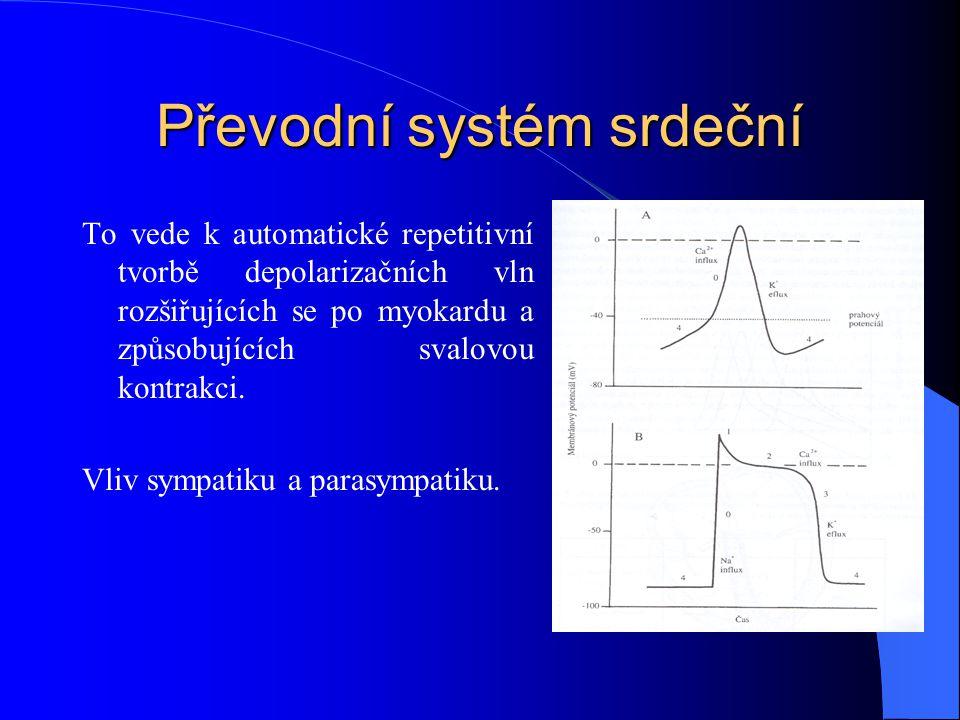 Převodní systém srdeční To vede k automatické repetitivní tvorbě depolarizačních vln rozšiřujících se po myokardu a způsobujících svalovou kontrakci.