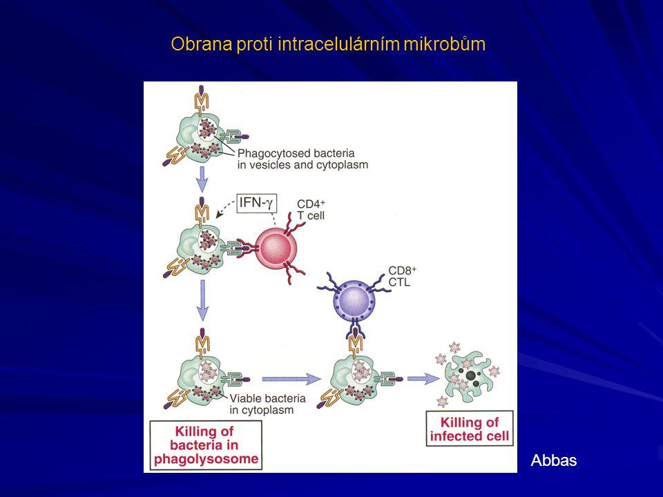 Obrana proti intracelulárním mikrobům Abbas