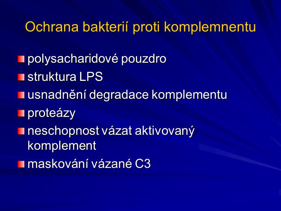 Ochrana bakterií proti komplemnentu polysacharidové pouzdro struktura LPS usnadnění degradace komplementu proteázy neschopnost vázat aktivovaný komple