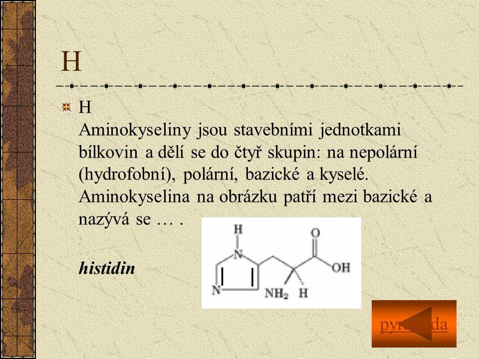 H H Aminokyseliny jsou stavebními jednotkami bílkovin a dělí se do čtyř skupin: na nepolární (hydrofobní), polární, bazické a kyselé.