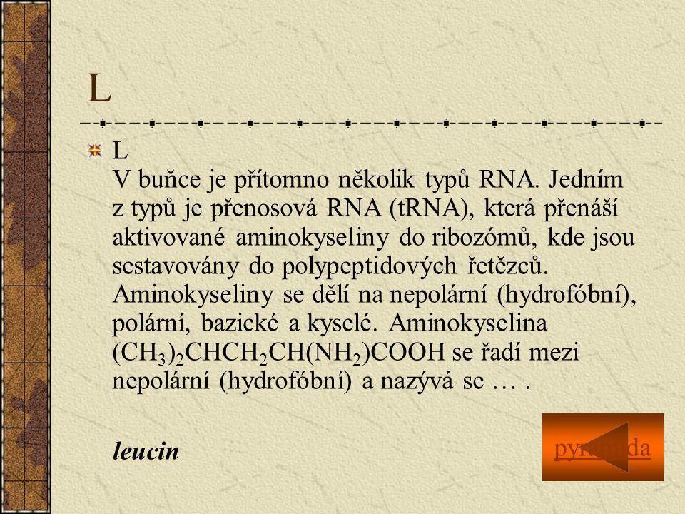 L L V buňce je přítomno několik typů RNA.
