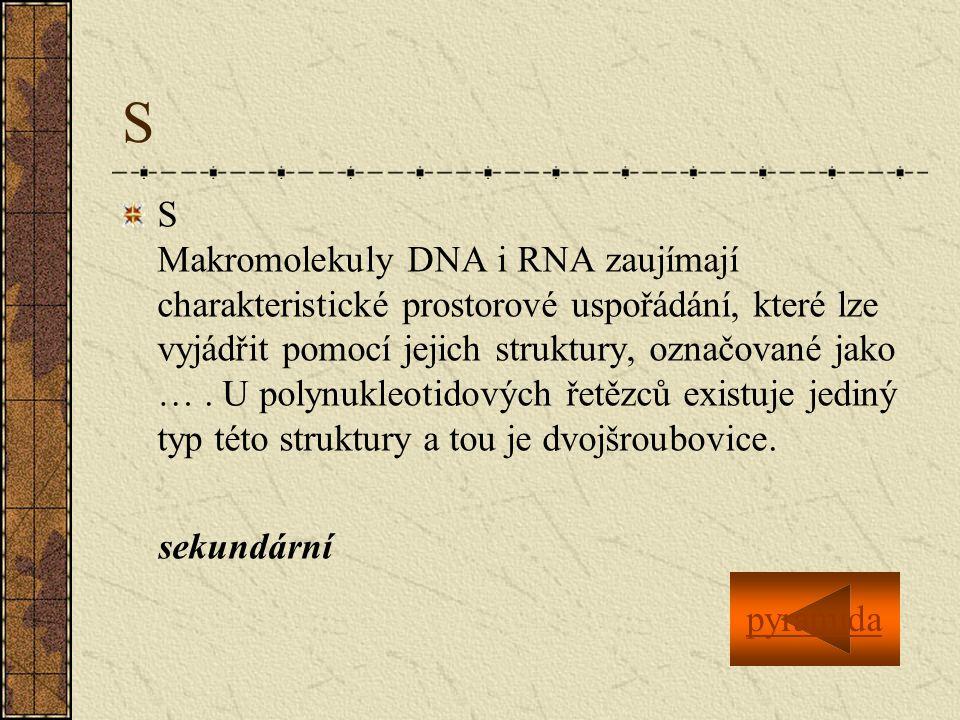 S S Makromolekuly DNA i RNA zaujímají charakteristické prostorové uspořádání, které lze vyjádřit pomocí jejich struktury, označované jako ….