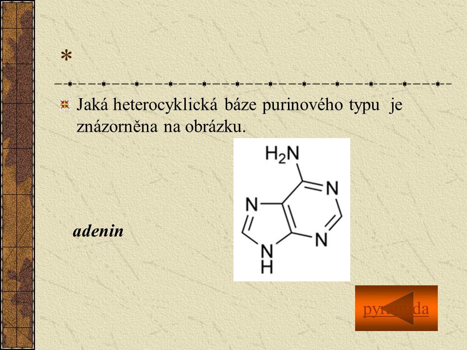 * Jaká heterocyklická báze purinového typu je znázorněna na obrázku. adenin pyramida