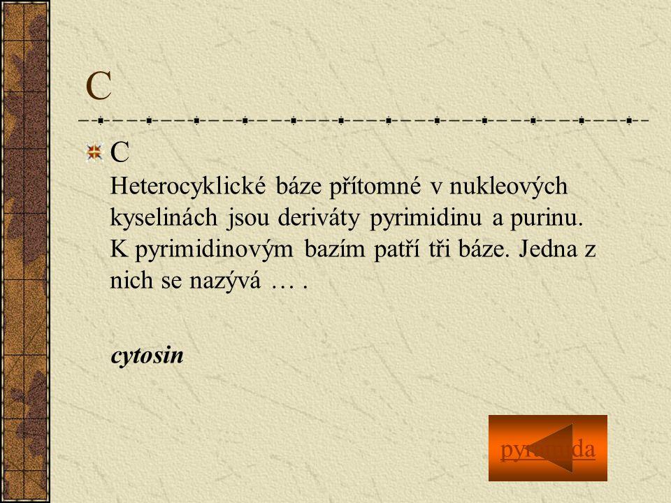 C C Heterocyklické báze přítomné v nukleových kyselinách jsou deriváty pyrimidinu a purinu.