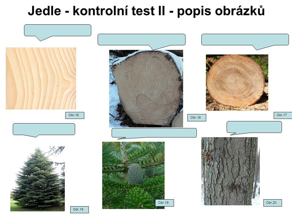Jedle - kontrolní test II - popis obrázků Obr.15 Obr.16 Obr.17 Obr.18 Obr.20Obr.19