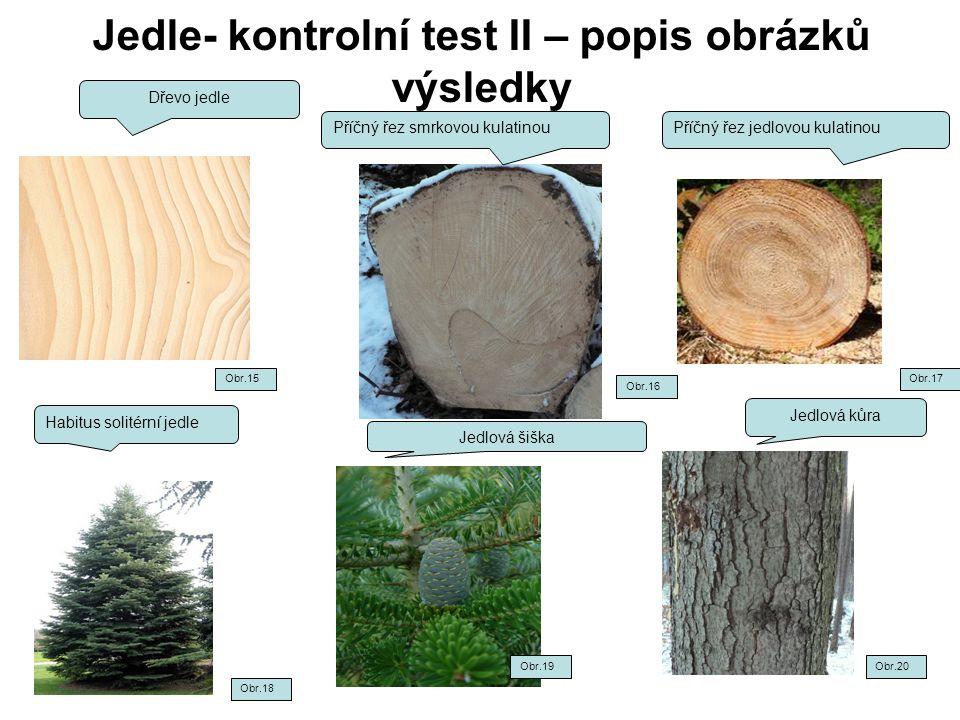 Jedle- kontrolní test II – popis obrázků výsledky Dřevo jedle Příčný řez smrkovou kulatinou Habitus solitérní jedle Jedlová kůra Jedlová šiška Obr.15