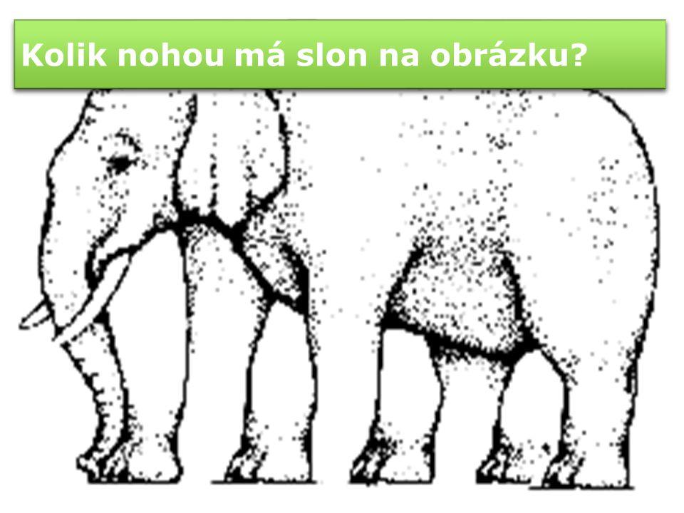 Sloní vtipy Proč ten slon nosí modré tenisky.Protože ty růžové jsou mu malé.