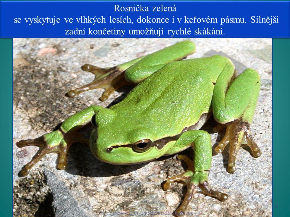 Rosnička zelená se vyskytuje ve vlhkých lesích, dokonce i v keřovém pásmu.