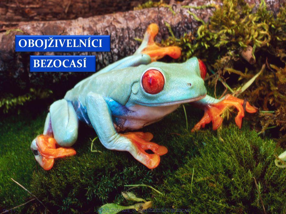 Dospělé žáby se živí živočišnou potravou.Dospělí obojživelníci dýchají plícemi a kůží.