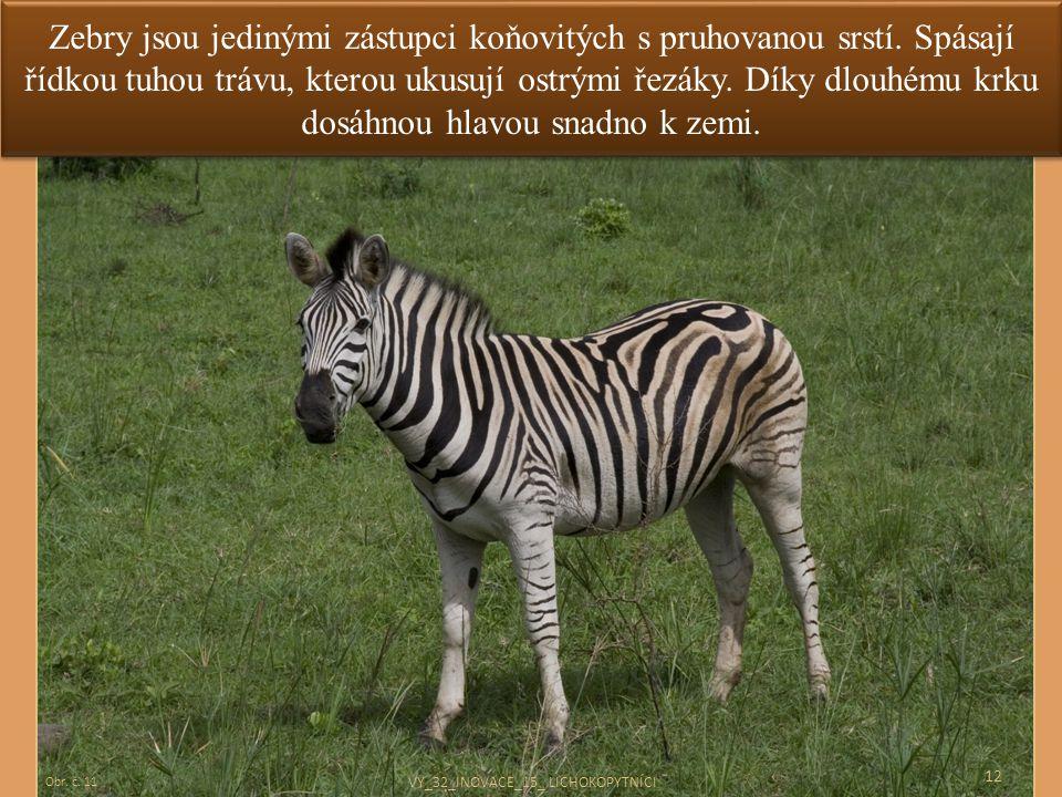 Zebry jsou jedinými zástupci koňovitých s pruhovanou srstí. Spásají řídkou tuhou trávu, kterou ukusují ostrými řezáky. Díky dlouhému krku dosáhnou hla