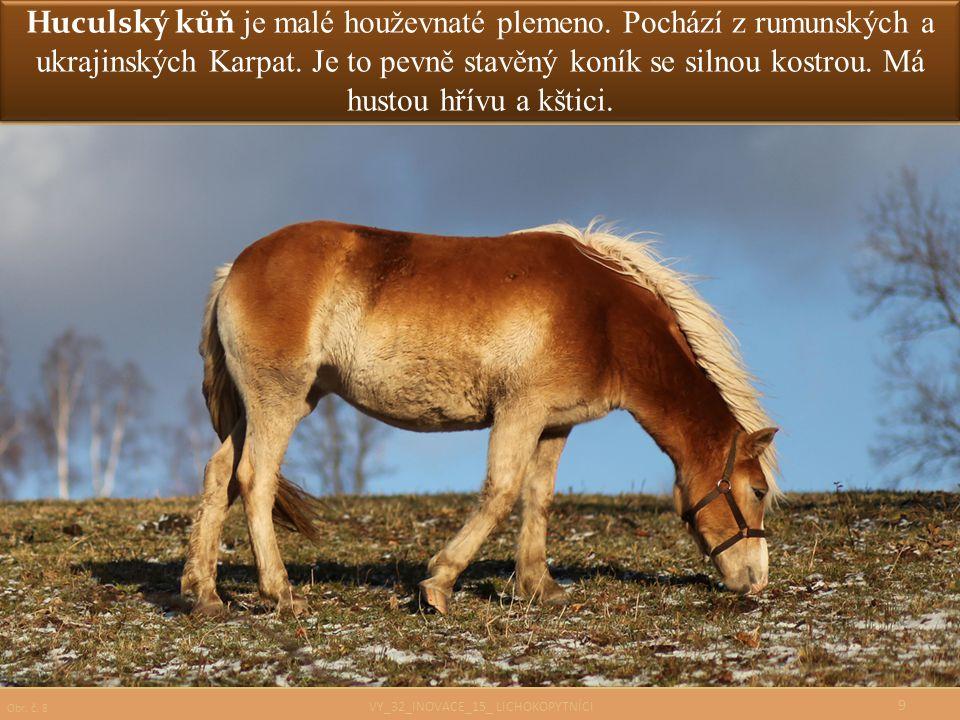 Huculský kůň je malé houževnaté plemeno. Pochází z rumunských a ukrajinských Karpat. Je to pevně stavěný koník se silnou kostrou. Má hustou hřívu a kš