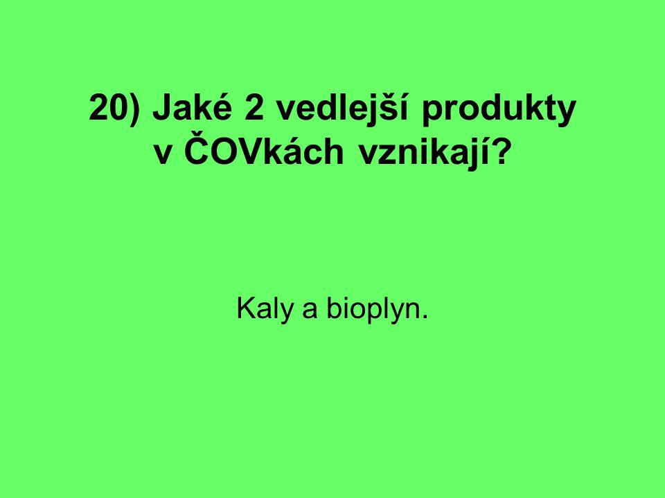 20) Jaké 2 vedlejší produkty v ČOVkách vznikají? Kaly a bioplyn.