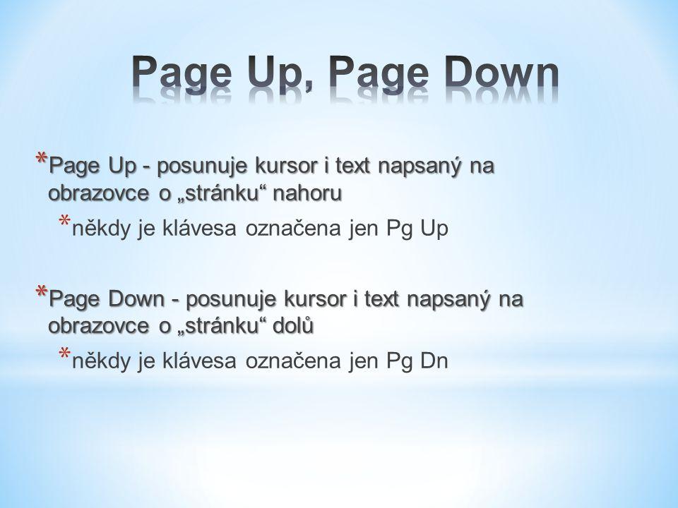"""* Page Up - posunuje kursor i text napsaný na obrazovce o """"stránku nahoru * někdy je klávesa označena jen Pg Up * Page Down - posunuje kursor i text napsaný na obrazovce o """"stránku dolů * někdy je klávesa označena jen Pg Dn"""