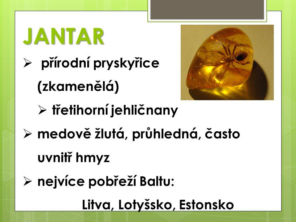 JANTAR  přírodní pryskyřice (zkamenělá)  třetihorní jehličnany  medově žlutá, průhledná, často uvnitř hmyz  nejvíce pobřeží Baltu: Litva, Lotyšsko