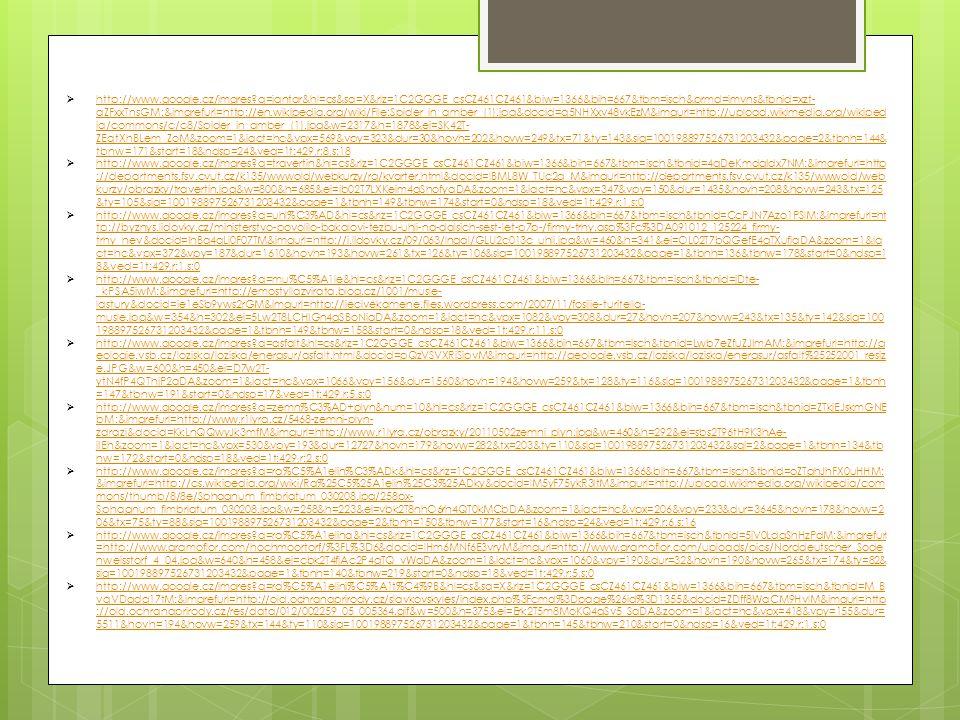  http://www.google.cz/imgres?q=jantar&hl=cs&sa=X&rlz=1C2GGGE_csCZ461CZ461&biw=1366&bih=667&tbm=isch&prmd=imvns&tbnid=xzt- aZFxxTnsGM:&imgrefurl=http: