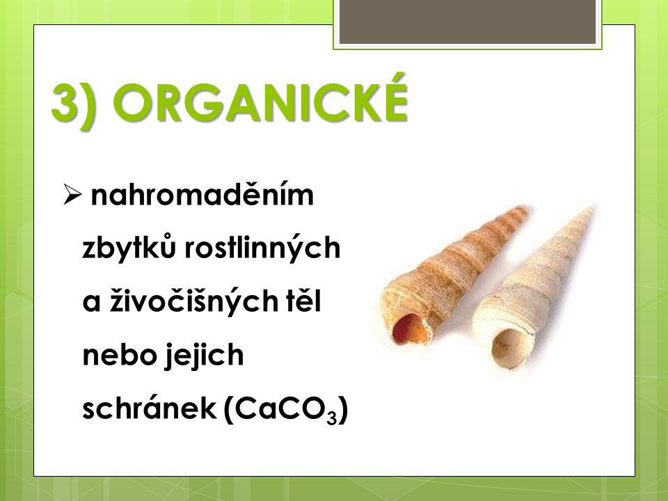 3) ORGANICKÉ  nahromaděním zbytků rostlinných a živočišných těl nebo jejich schránek (CaCO 3 )