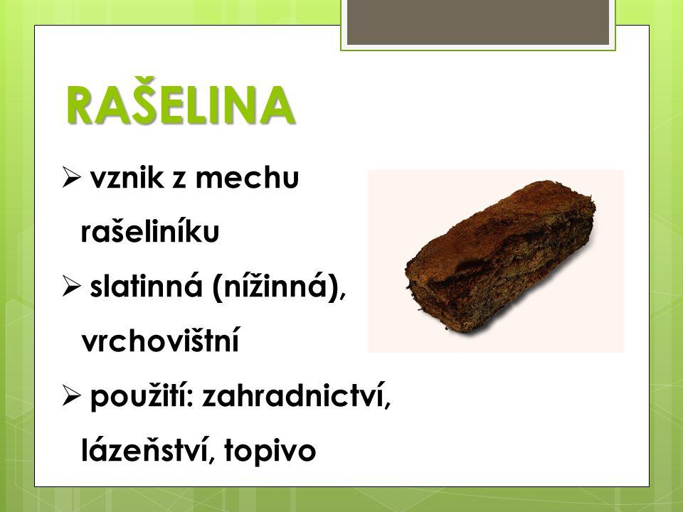 RAŠELINA  vznik z mechu rašeliníku  slatinná (nížinná), vrchovištní  použití: zahradnictví, lázeňství, topivo