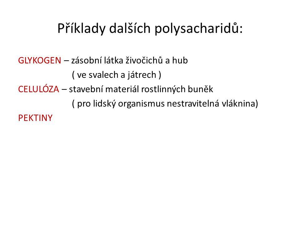 Příklady dalších polysacharidů: GLYKOGEN – zásobní látka živočichů a hub ( ve svalech a játrech ) CELULÓZA – stavební materiál rostlinných buněk ( pro