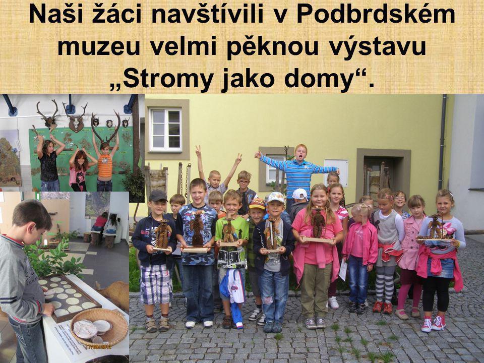 """Naši žáci navštívili v Podbrdském muzeu velmi pěknou výstavu """"Stromy jako domy""""."""
