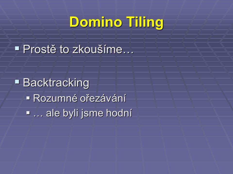 Domino Tiling  Prostě to zkoušíme…  Backtracking  Rozumné ořezávání  … ale byli jsme hodní