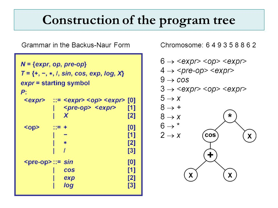 Construction of the program tree 6  4  9  cos 3  5  x 8  + 8  x 6  * 2  x Grammar in the Backus-Naur FormChromosome: