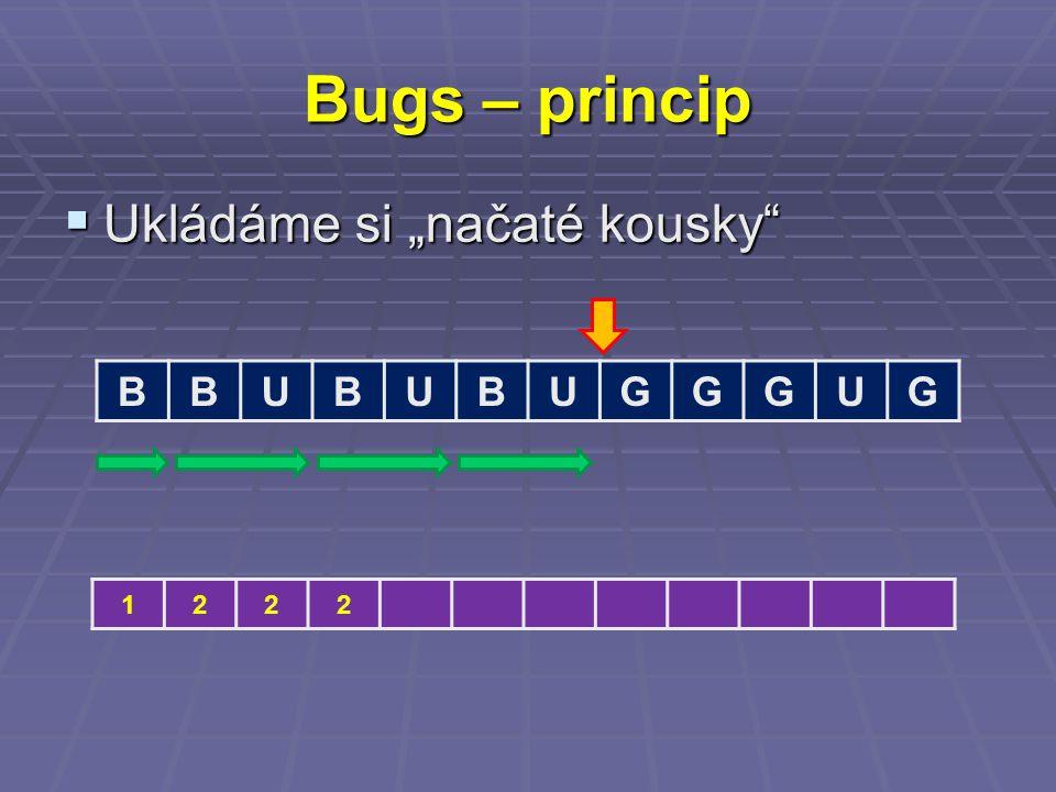 "Bugs – princip  Ukládáme si ""načaté kousky BBUBUBUGGGUG 1222"