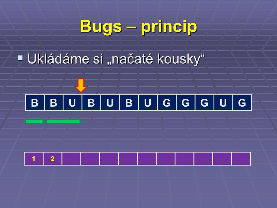 "Bugs – princip  Ukládáme si ""načaté kousky BBUBUBUGGGUG 12"