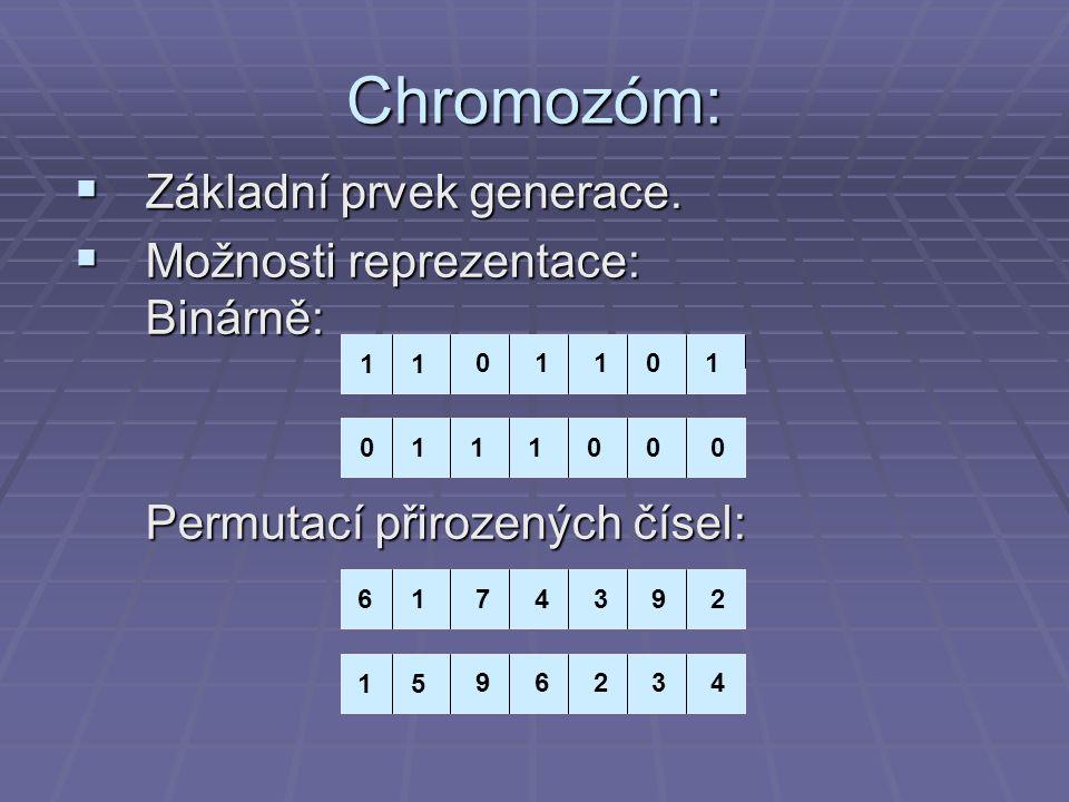 Chromozóm:  Základní prvek generace.  Možnosti reprezentace: Binárně: Permutací přirozených čísel: 1 11 011101 1110000 61 74392 15 96234