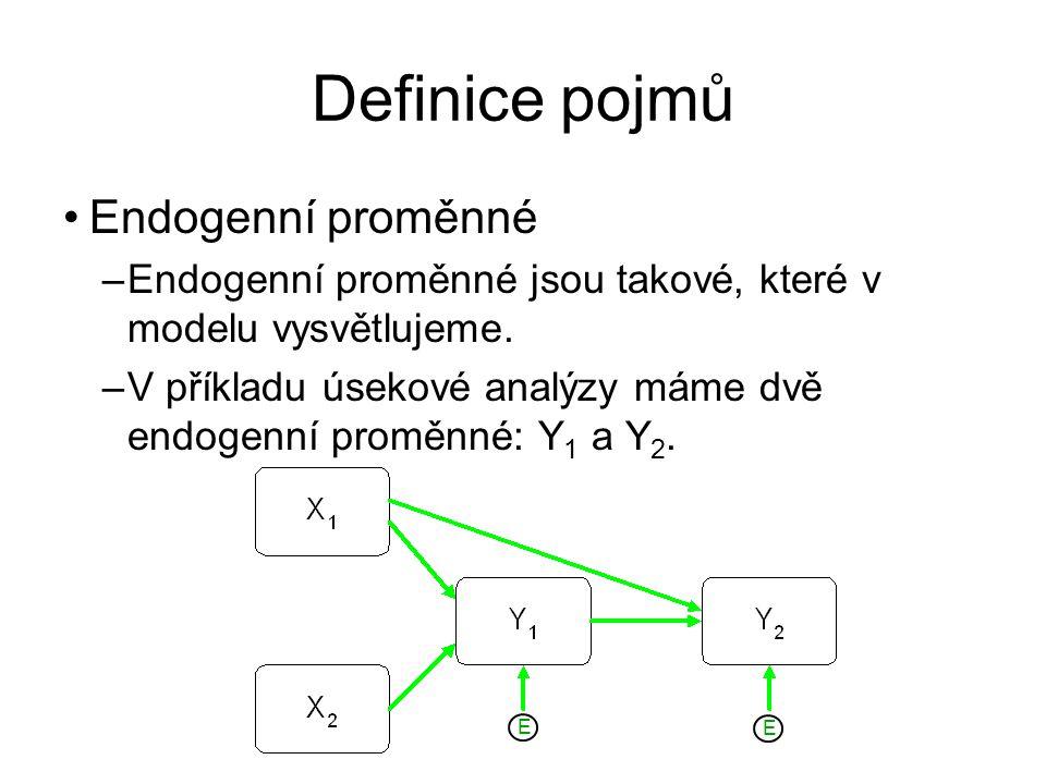 Definice pojmů Endogenní proměnné –Endogenní proměnné jsou takové, které v modelu vysvětlujeme. –V příkladu úsekové analýzy máme dvě endogenní proměnn