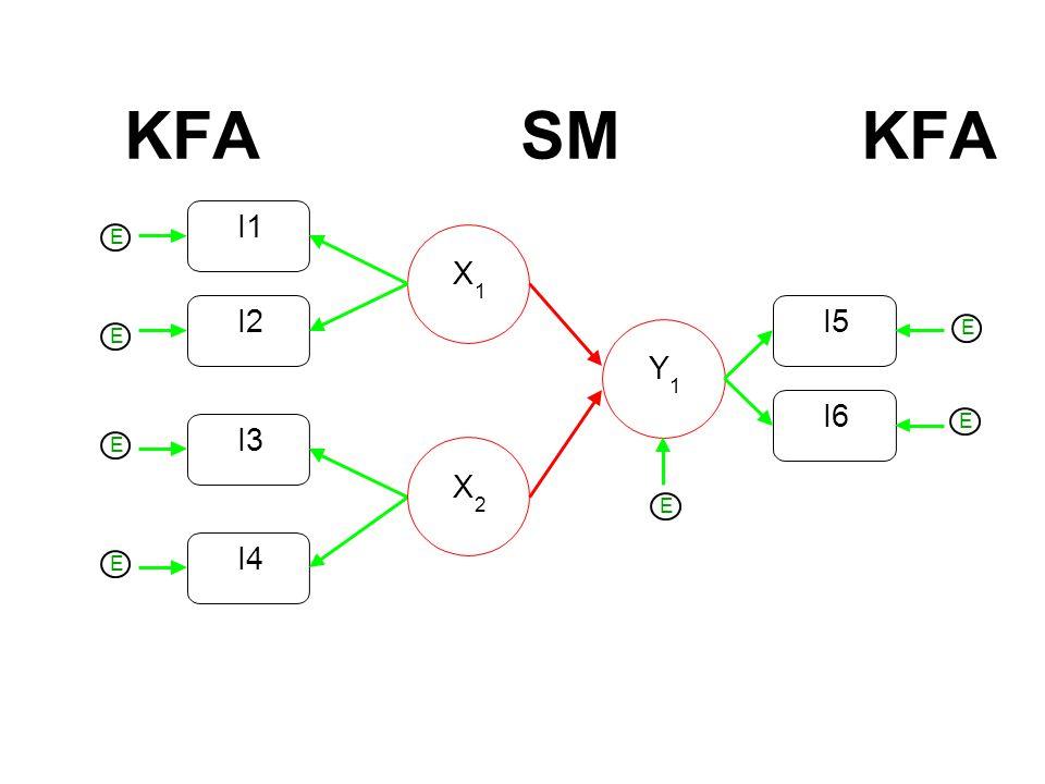 KFA SM KFA I2 I1 X 1 I3 I4 X 2 Y 1 I6 I5 E E E E E E E