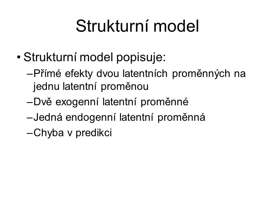 Strukturní model Strukturní model popisuje: –Přímé efekty dvou latentních proměnných na jednu latentní proměnou –Dvě exogenní latentní proměnné –Jedná