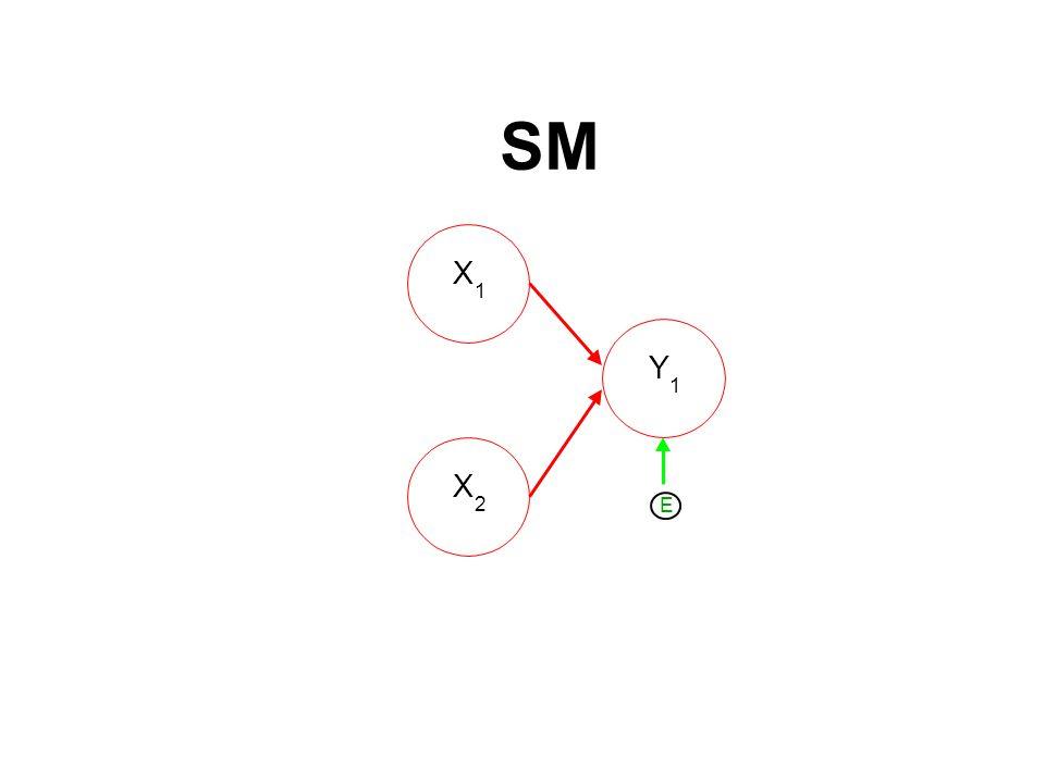 SM X 1 X 2 Y 1 E