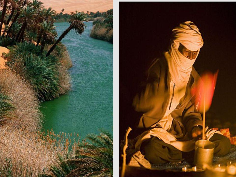 Tripolis - Libye bude pěstovat pšenici na sto tisících hektarů úrodné půdy.