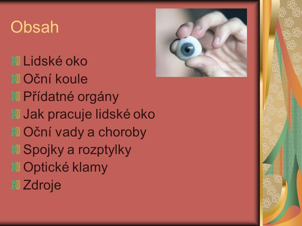 Obsah Lidské oko Oční koule Přídatné orgány Jak pracuje lidské oko Oční vady a choroby Spojky a rozptylky Optické klamy Zdroje