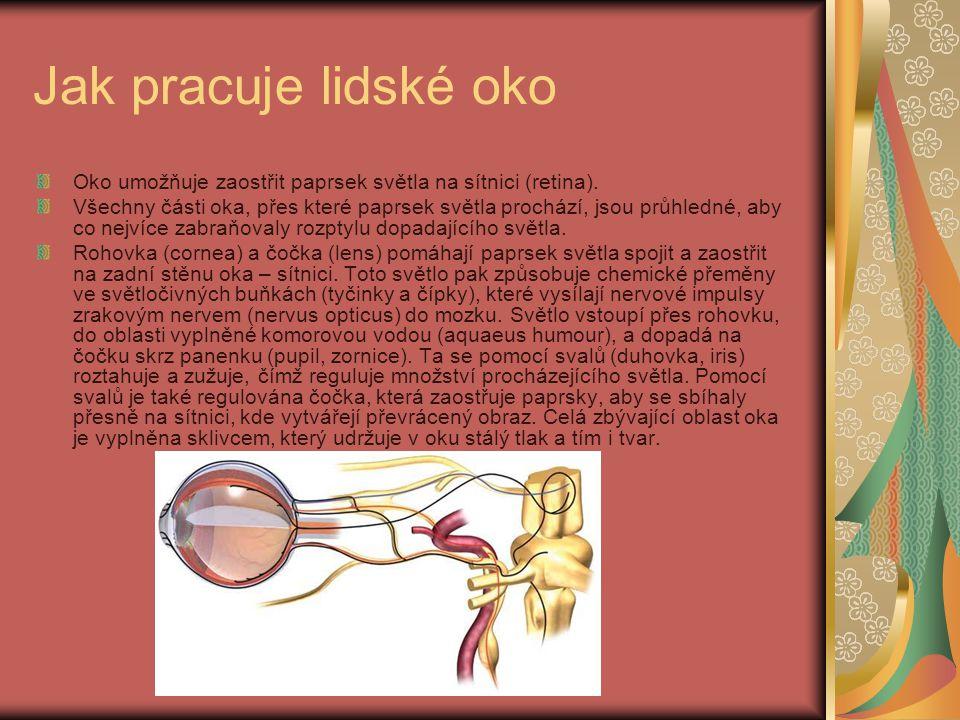 Jak pracuje lidské oko Oko umožňuje zaostřit paprsek světla na sítnici (retina). Všechny části oka, přes které paprsek světla prochází, jsou průhledné