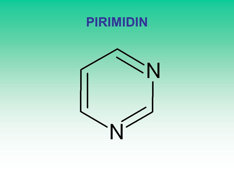 PIRIMIDIN