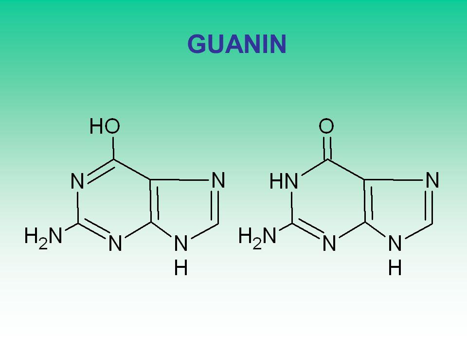 GUANIN