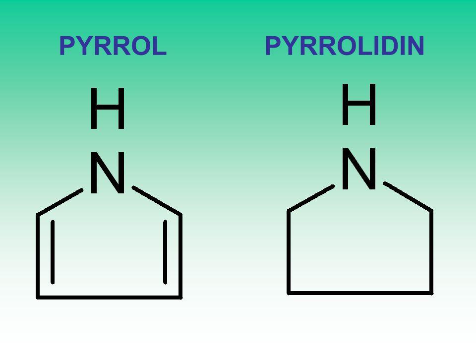 PYRROL PYRROLIDIN