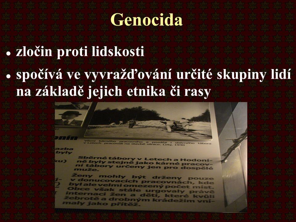 Genocida zločin proti lidskosti spočívá ve vyvražďování určité skupiny lidí na základě jejich etnika či rasy