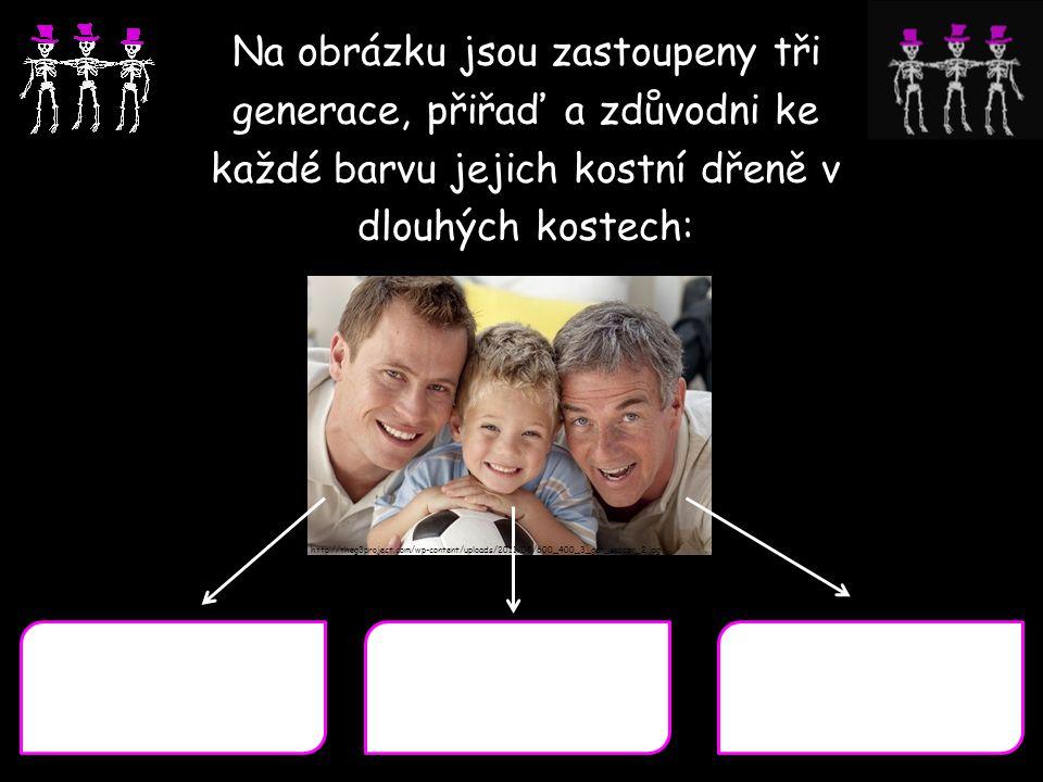 Na obrázku jsou zastoupeny tři generace, přiřaď a zdůvodni ke každé barvu jejich kostní dřeně v dlouhých kostech: http://theg3project.com/wp-content/u
