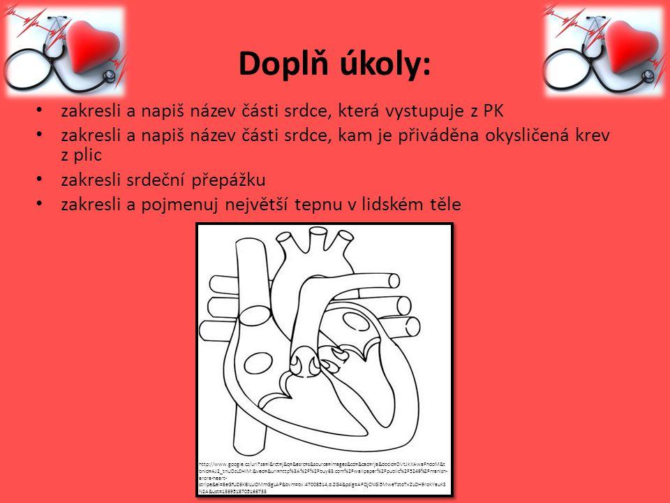 Doplň úkoly: zakresli a napiš název části srdce, která vystupuje z PK zakresli a napiš název části srdce, kam je přiváděna okysličená krev z plic zakr
