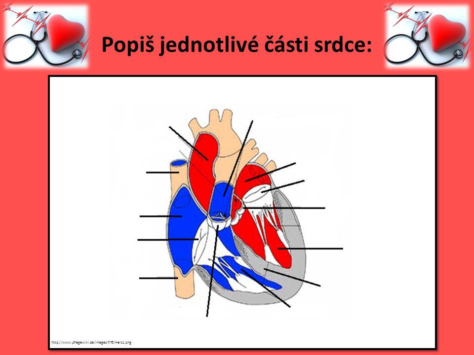 Popiš jednotlivé části srdce: http://www.pflegewiki.de/images/f/f5/Herz1.png