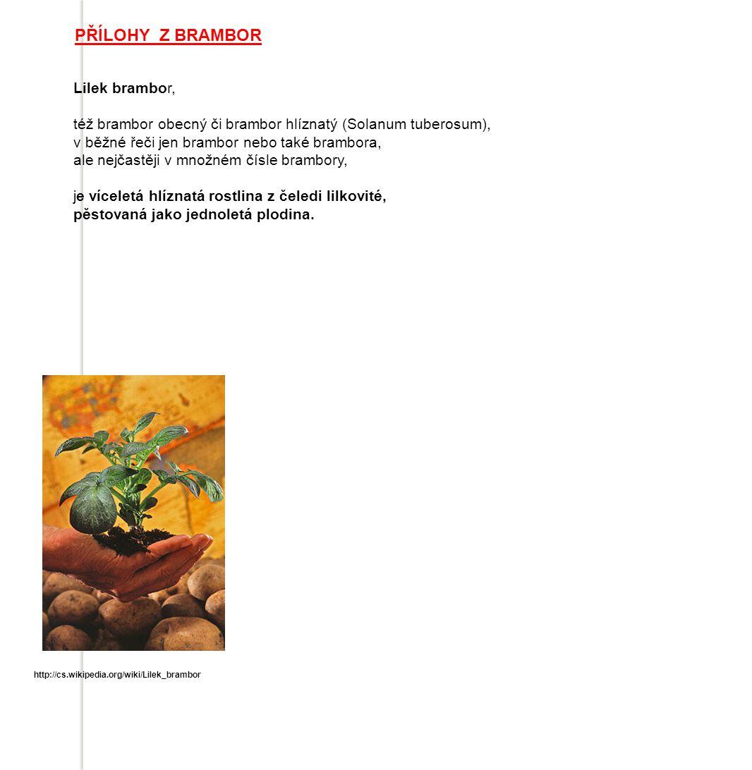 PŘÍLOHY Z BRAMBOR Lilek brambor, též brambor obecný či brambor hlíznatý (Solanum tuberosum), v běžné řeči jen brambor nebo také brambora, ale nejčastěji v množném čísle brambory, je víceletá hlíznatá rostlina z čeledi lilkovité, pěstovaná jako jednoletá plodina.