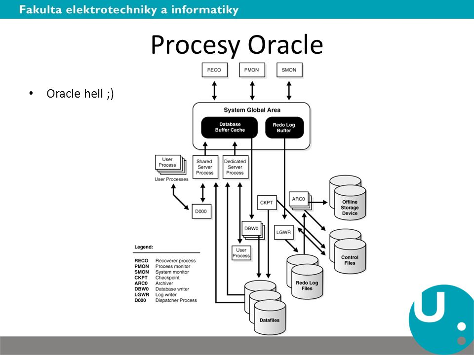 Procesy Oracle Oracle hell ;)