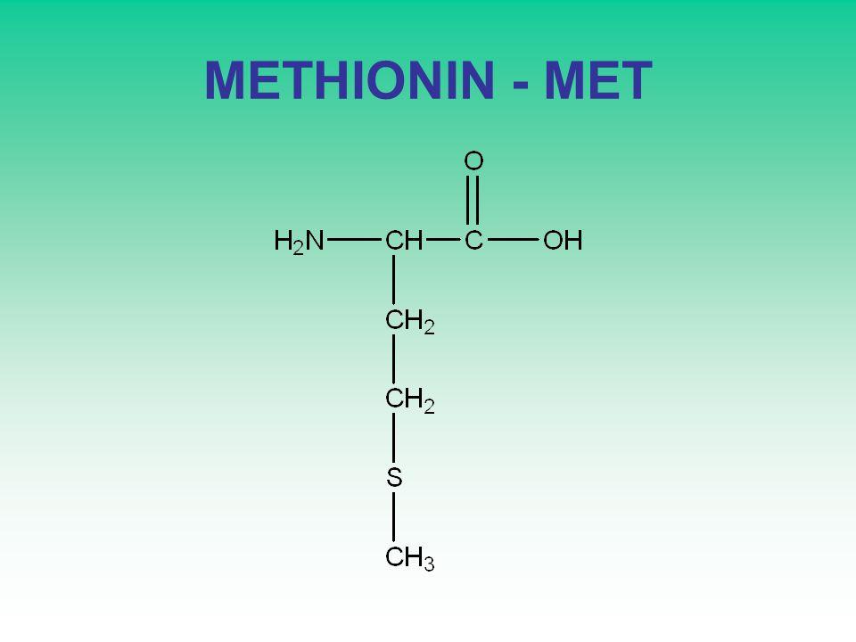 METHIONIN - MET