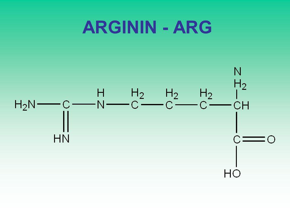 ARGININ - ARG