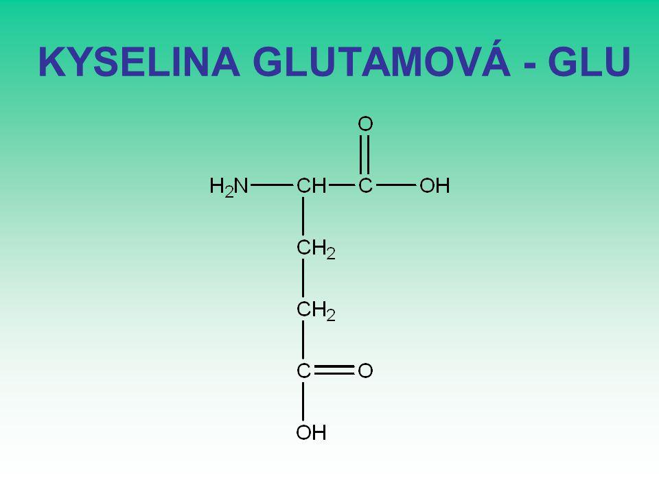 KYSELINA GLUTAMOVÁ - GLU