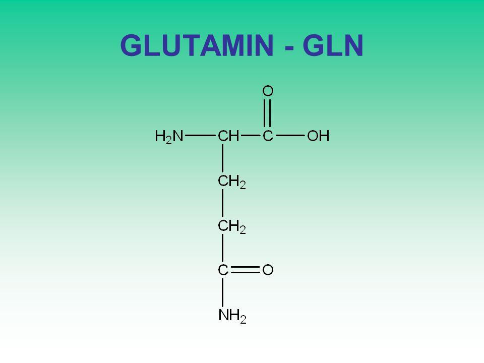 GLUTAMIN - GLN