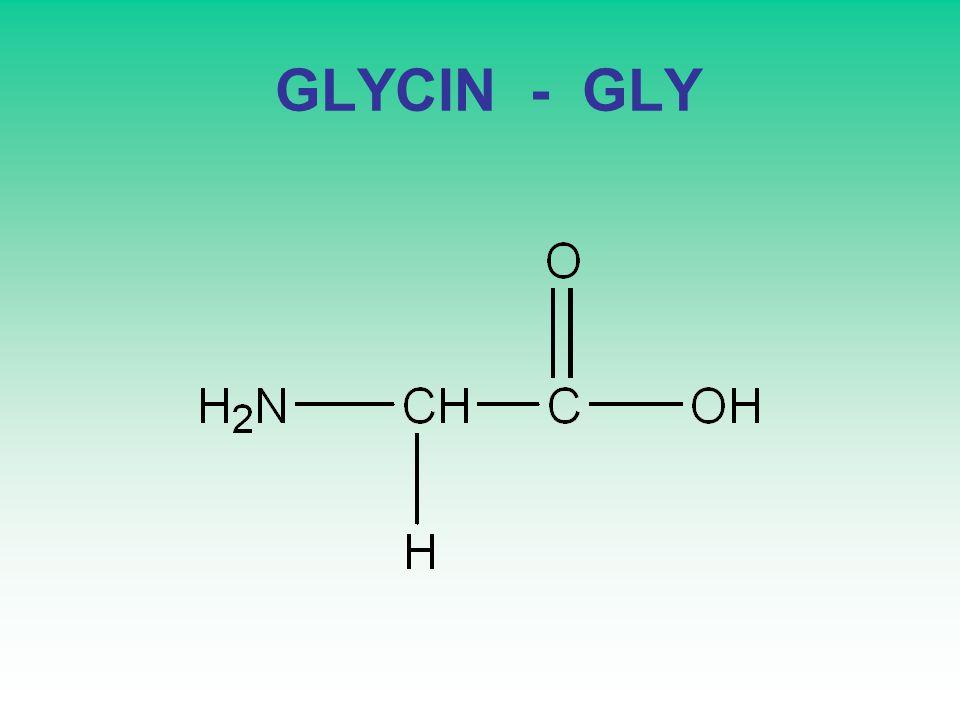GLYCIN - GLY